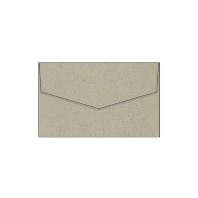 Botany 80x130 iflap Envelope 115gsm Naturaliste Pack 100 (***SECONDS****)