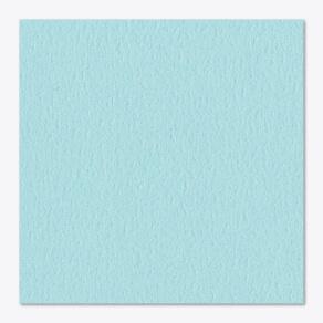 Woodland Bluejay paper