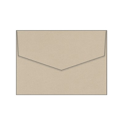 Glamour Puss 130x190 iflap Envelope 120gsm Champers Pack 50