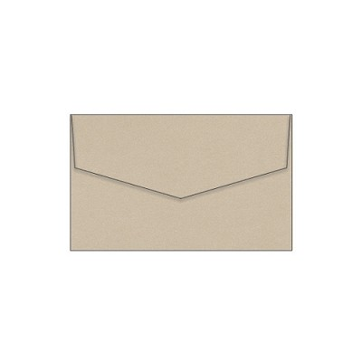 Glamour Puss 80x130 iflap Envelope 120gsm Champers